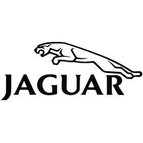 Jaguar matrica