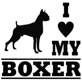 Boxer matrica
