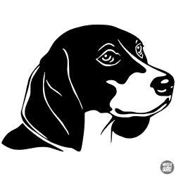 Beagle matrica 0