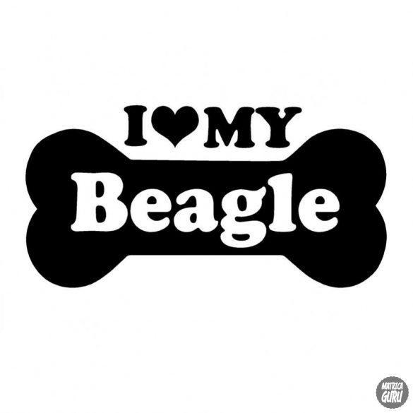 Beagle matrica 6