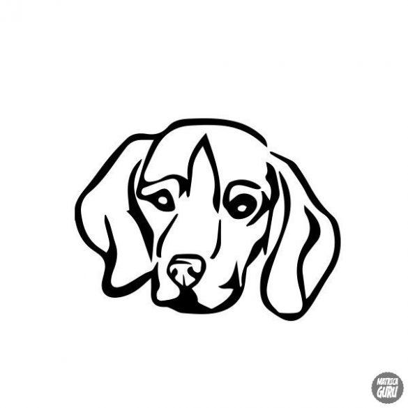 Beagle matrica 10