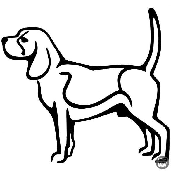 Beagle matrica 13