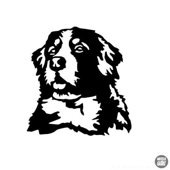 Berni pásztor matrica 2