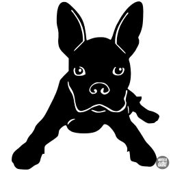 Boston terrier matrica 3