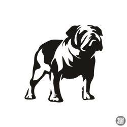 Bulldog matrica 6
