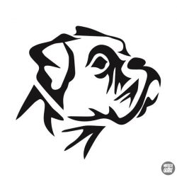 Bulldog matrica 7