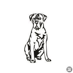 Cane corso matrica 4