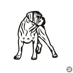 Cane corso matrica 5