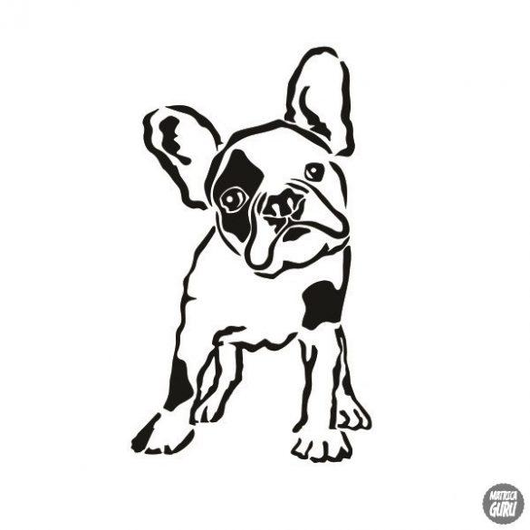 Francia bulldog matrica 13