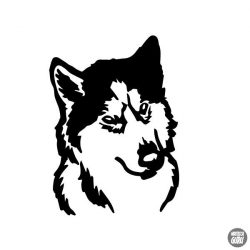 Husky matrica 0