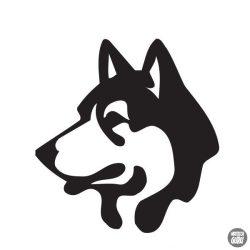Husky matrica 7