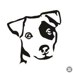 Jack russel terrier matrica 0