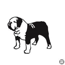 Angol bulldog matrica 14
