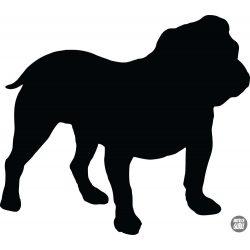 Angol bulldog matrica 22