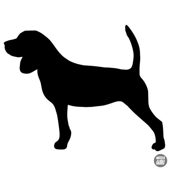 Beagle matrica 15