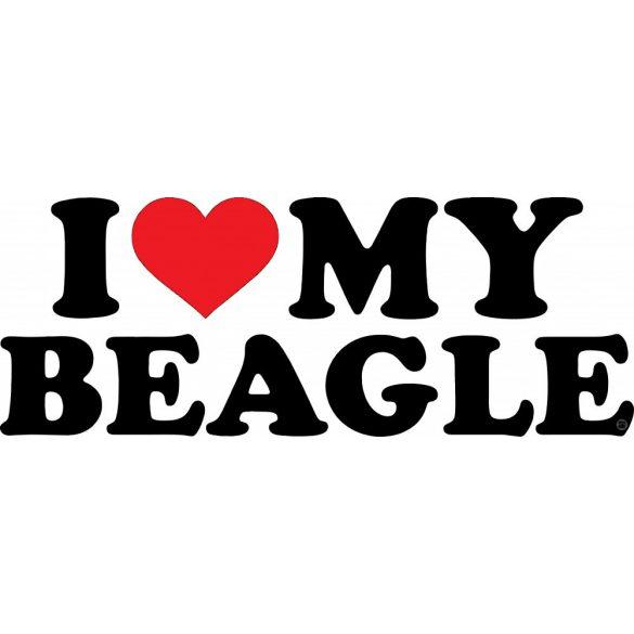 Beagle matrica 17