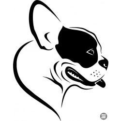 Boston terrier matrica 16