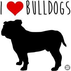 Bulldog matrica 21