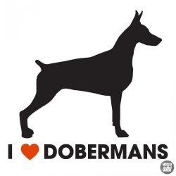 Dobermann matrica 17