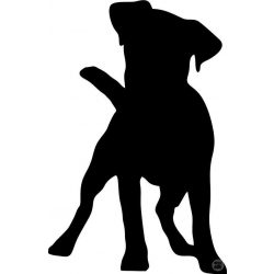 Jack Russel terrier matrica 10