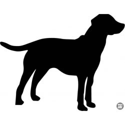 Labrador matrica 18