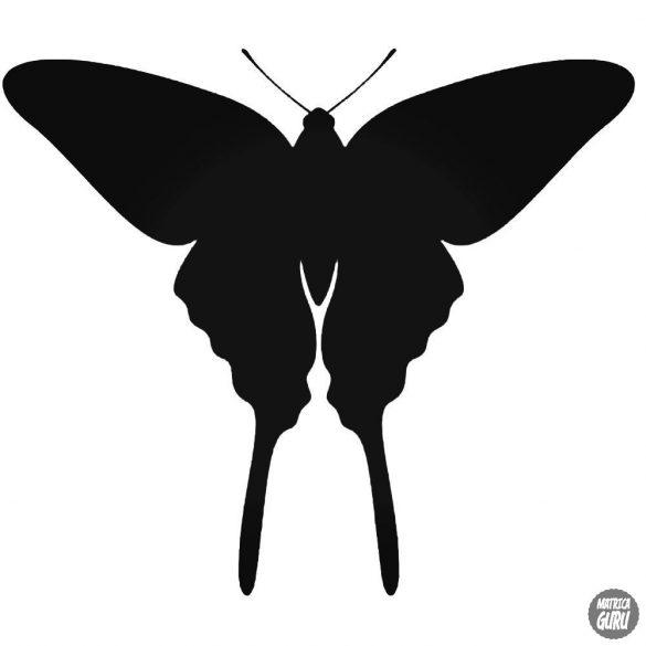 Pillangó matrica 1