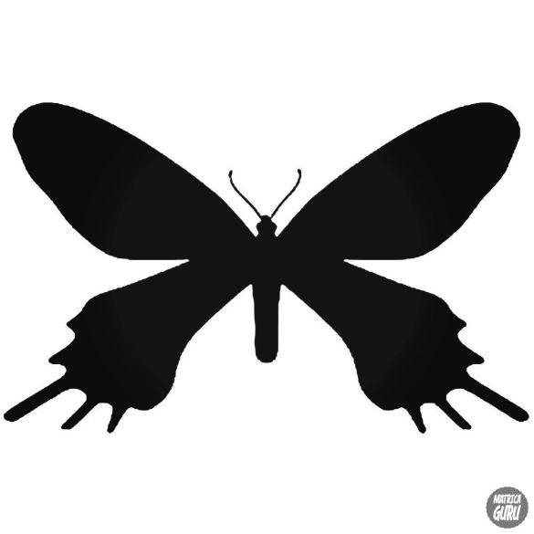 Pillangó matrica 2