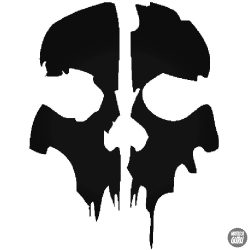 Call Of Duty Ghosts matrica