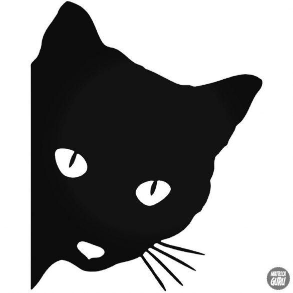 Figyelő Macska matrica