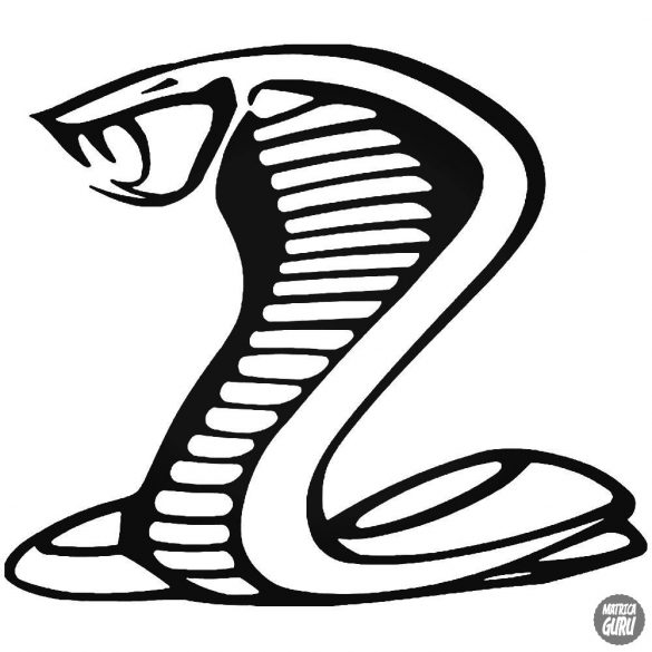 Cobra matrica