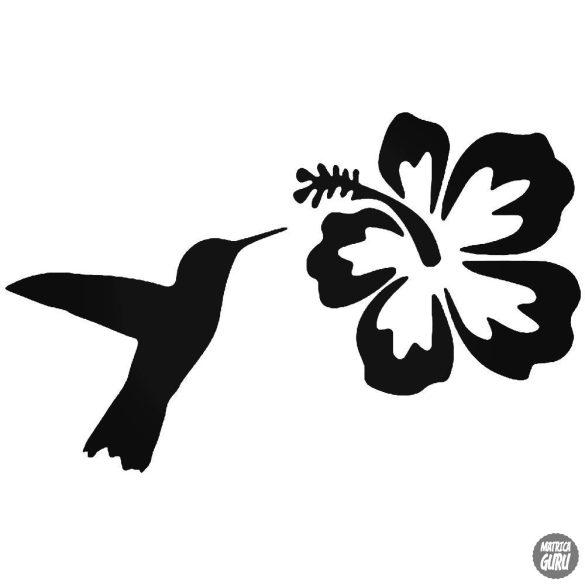 Kolibri hibiszkusz matrica