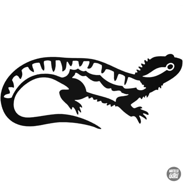 Iguana matrica