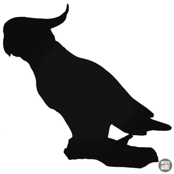 Kakadu matrica