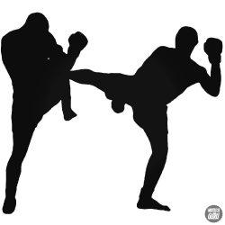 Kickbox matrica