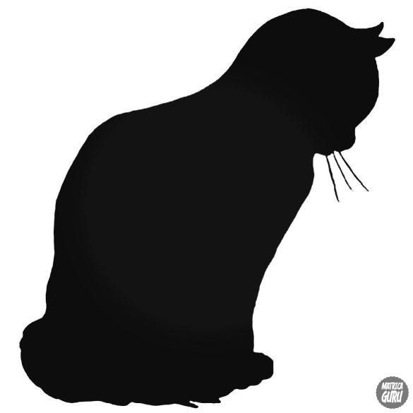 Szomorú cica matrica
