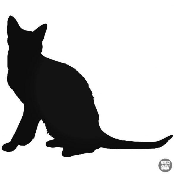 Korat macska matrica