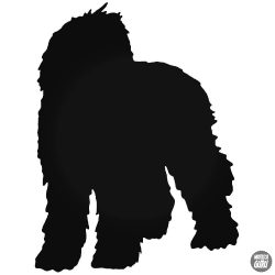 Labradoodle kutya matrica