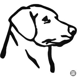 """Labrador """"1"""" matrica"""