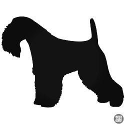 Terrier kutyus matrica