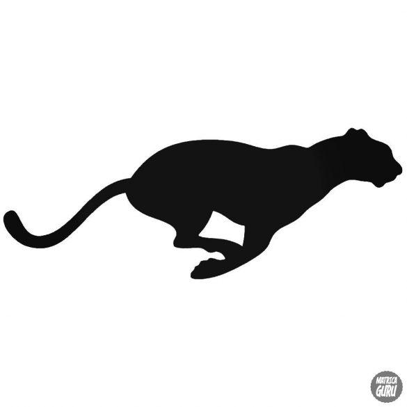Leopárd matrica