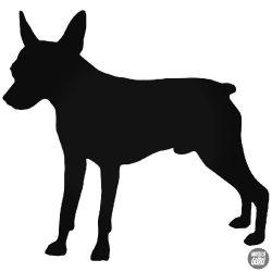 """Mini pincser """"1"""" Kutya matrica"""