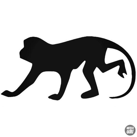 Ezüsthasú makákó matrica