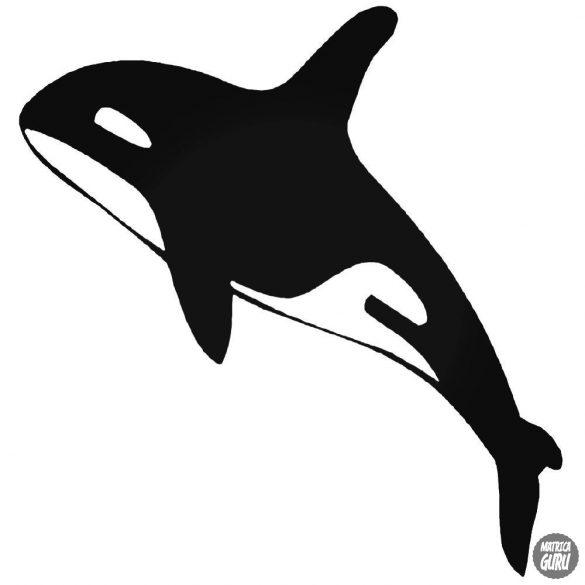 """Delfinke """"1"""" matrica"""
