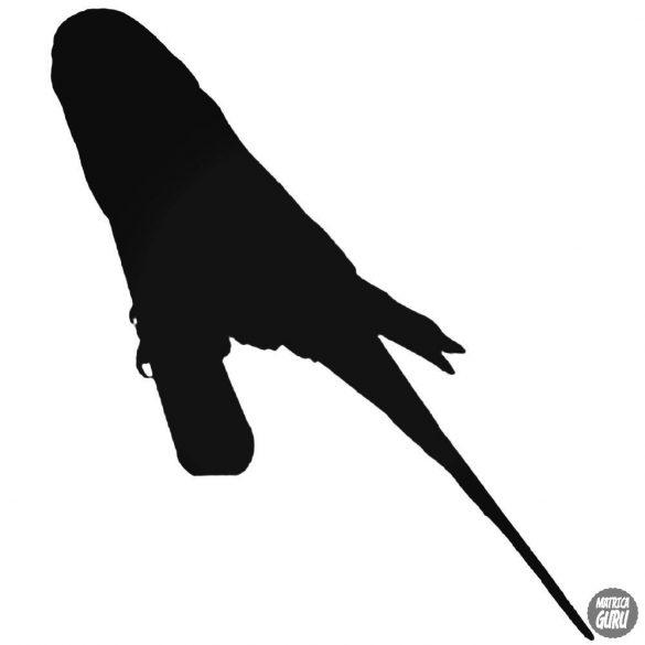 Kis papagáj matrica