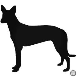 Fáraó Kutya matrica