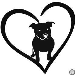 Pitbull szeretet matrica