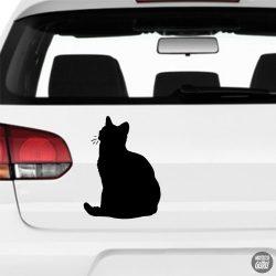 Rövidszőrű Macska matrica