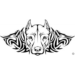 Pitbull tetoválás matrica