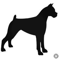 Boxer kutya matrica