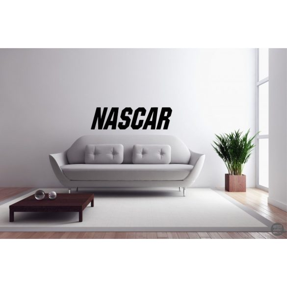 NASCAR Falmatrica